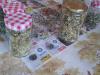 taborniski-pohod-izdelava-herbarija-susenje-cajev-1-large